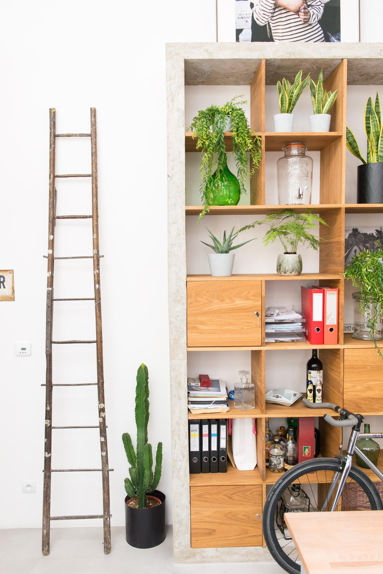 bureau bienfaits plantes végétalisation bureaux décoration végétale d'intérieur