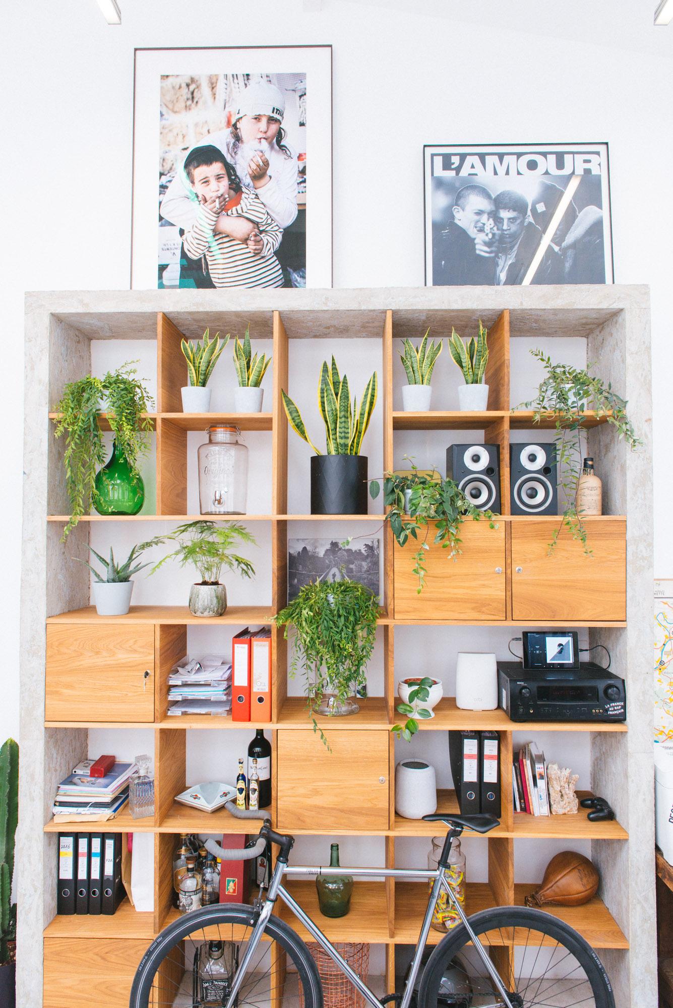 bibliothèque végétale végétalisation bureaux décoration d'intérieur
