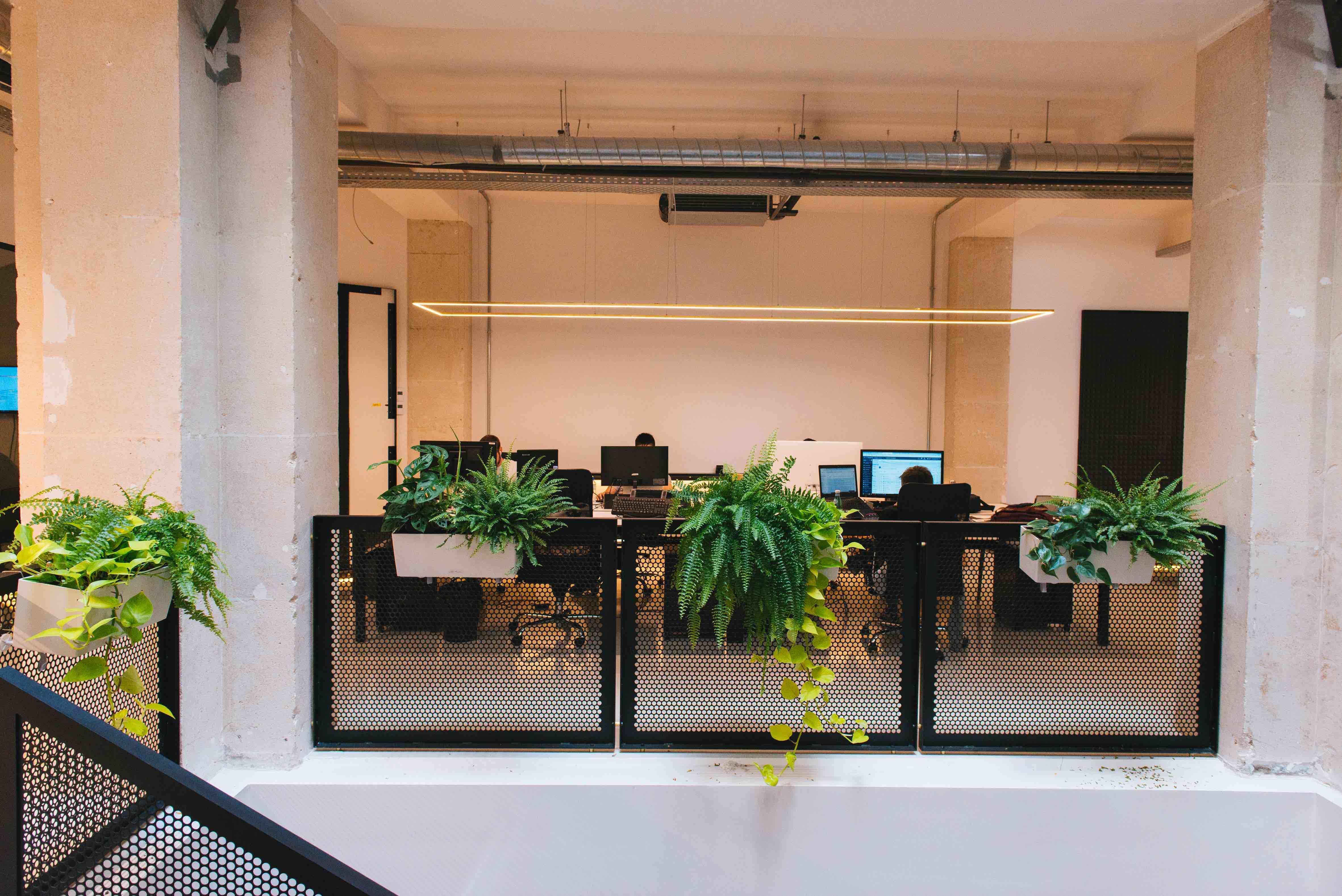 végétalisation bureaux paris sweet jungle