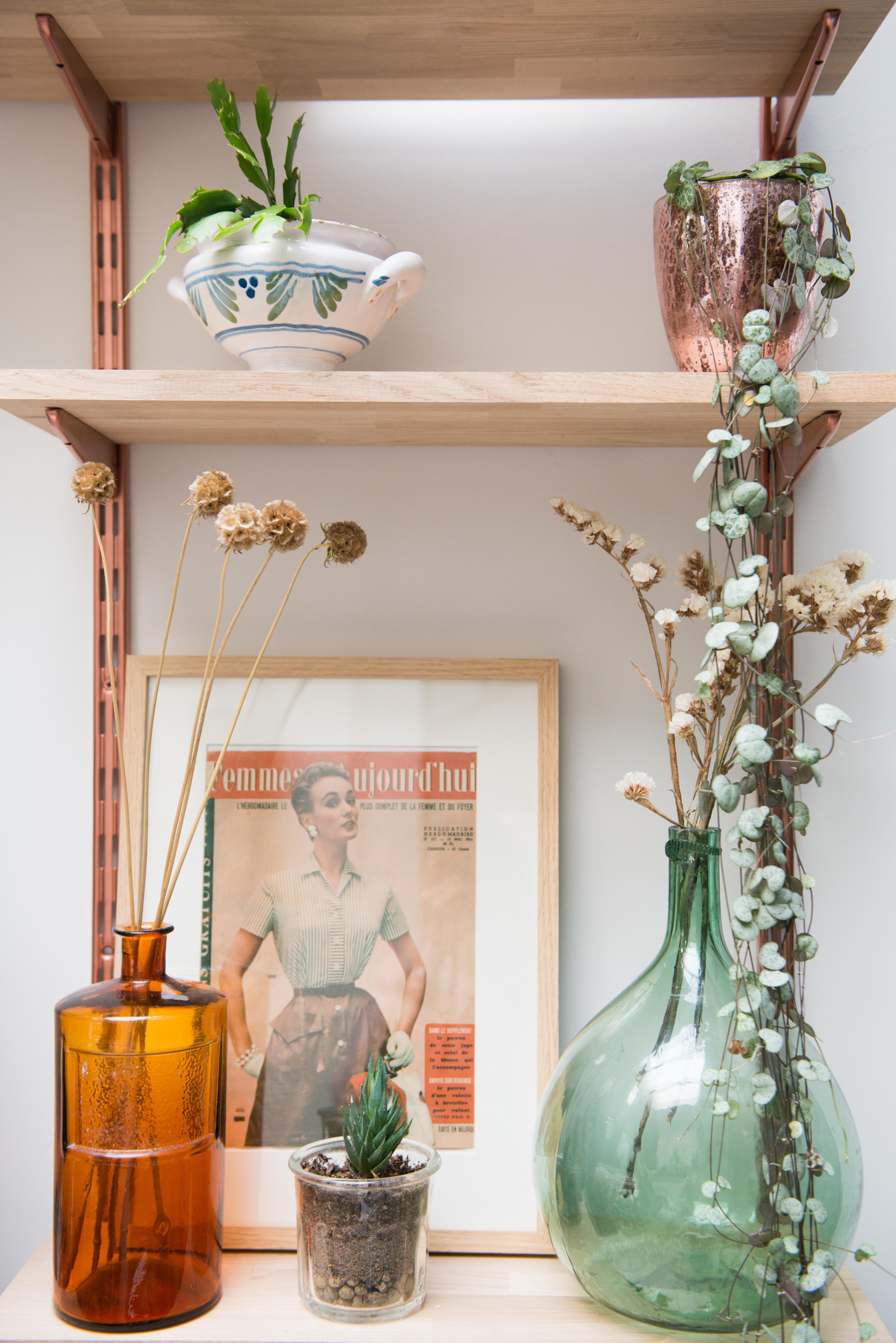 décoration végétale étagère murale plantes vertes fleurs séchées pots vintage