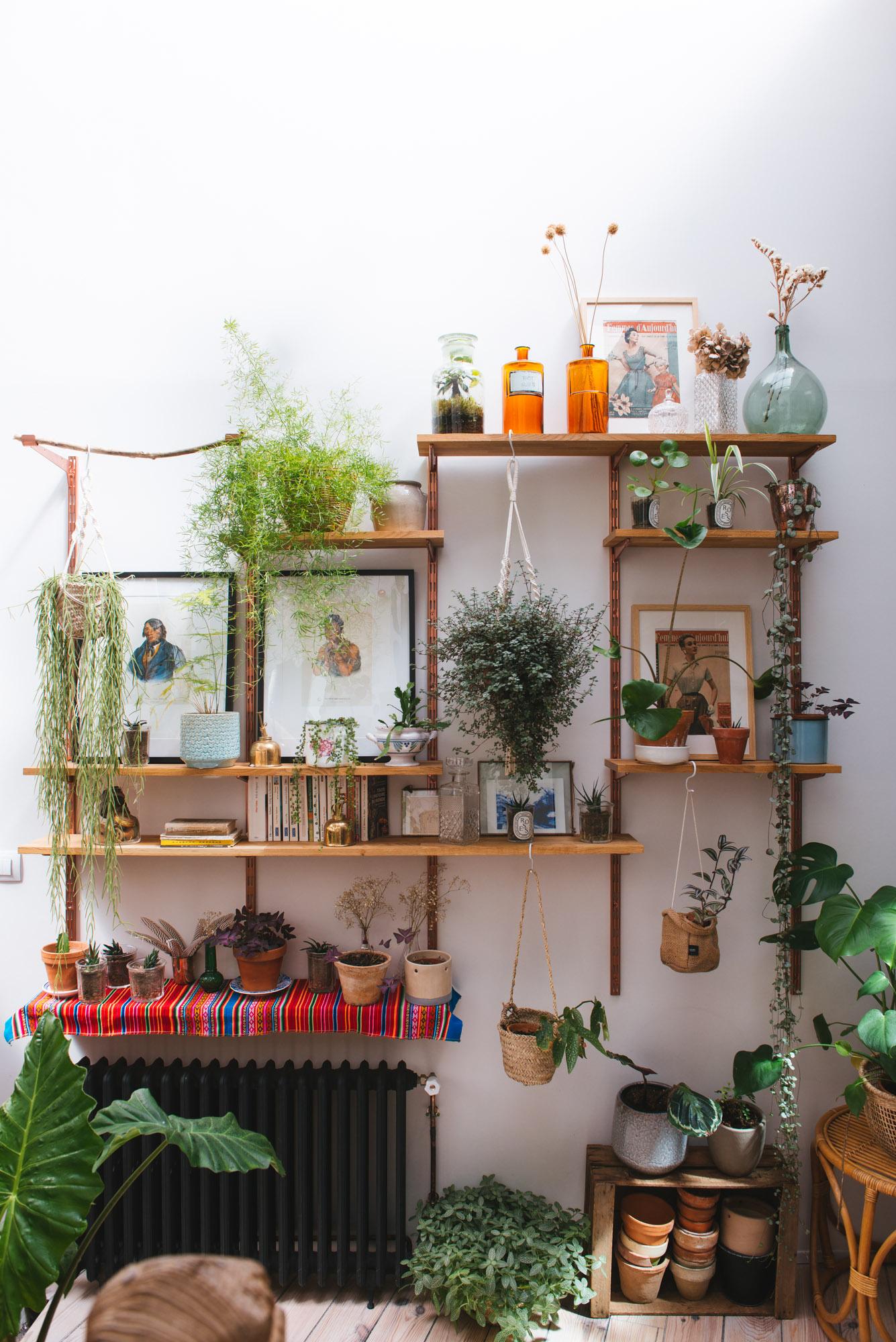 étagère murale végétalisation décoration végétale