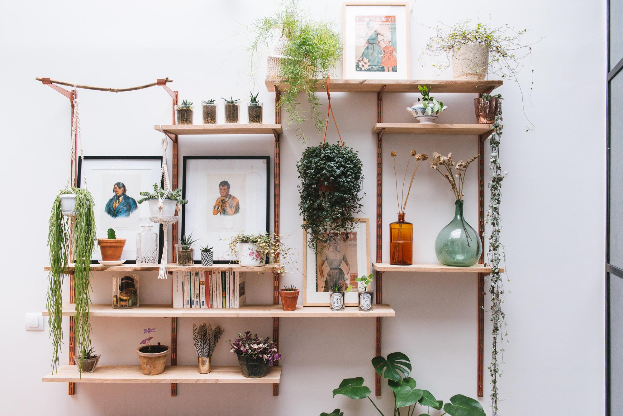 étagère végétale végétalisation décoration végétale