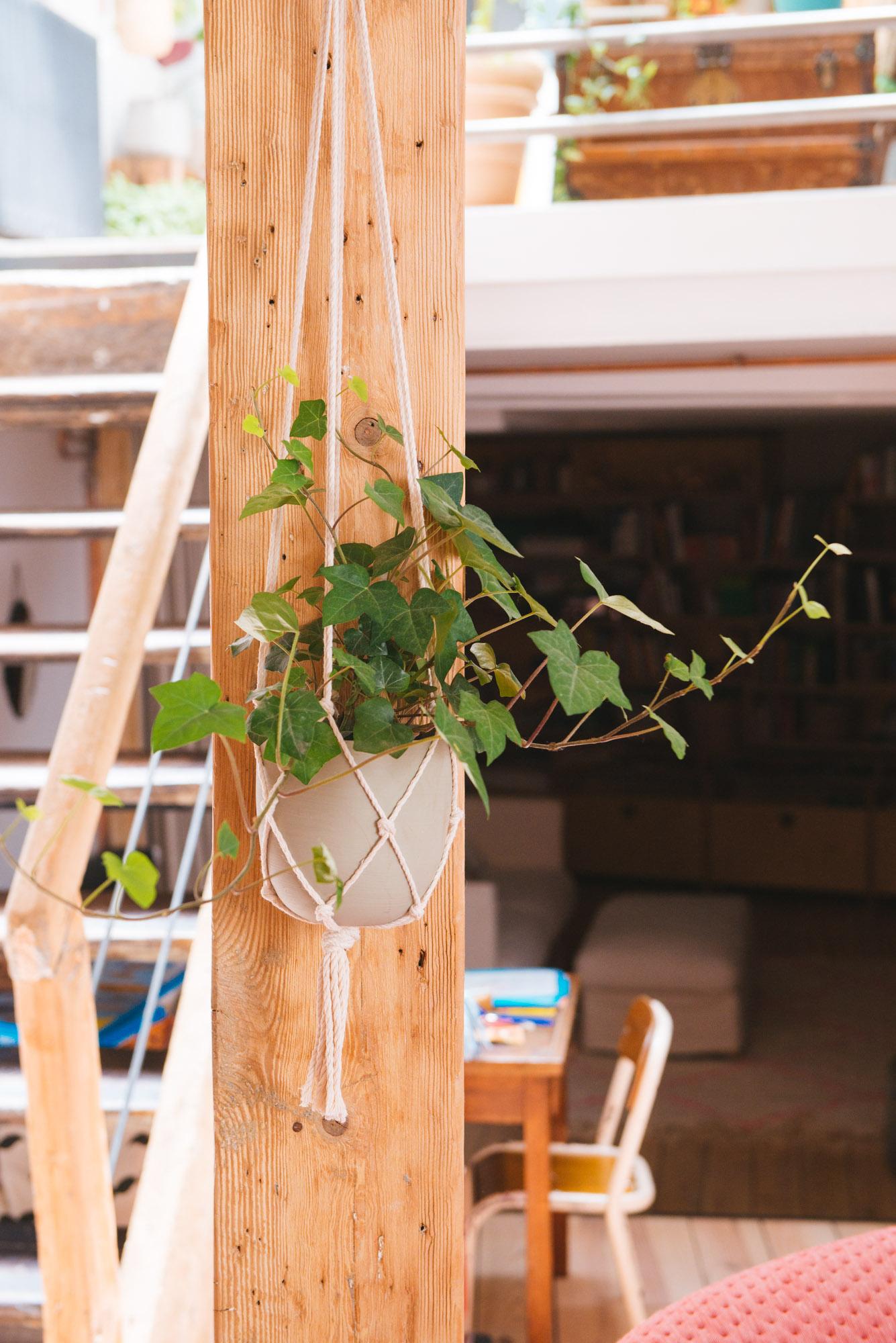 liere plante verte à suspendre macramé décoration végétale végétalisation