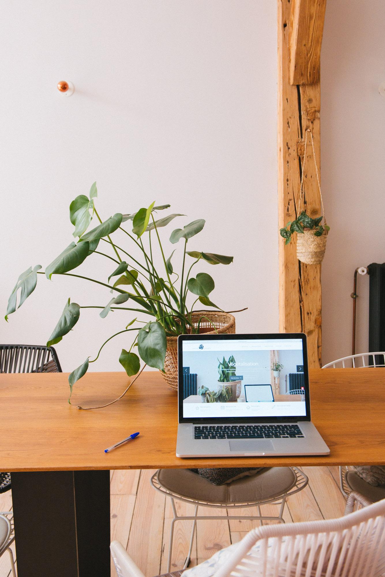 plantes d'intérieur bureau travail végétalisation décoration végétale