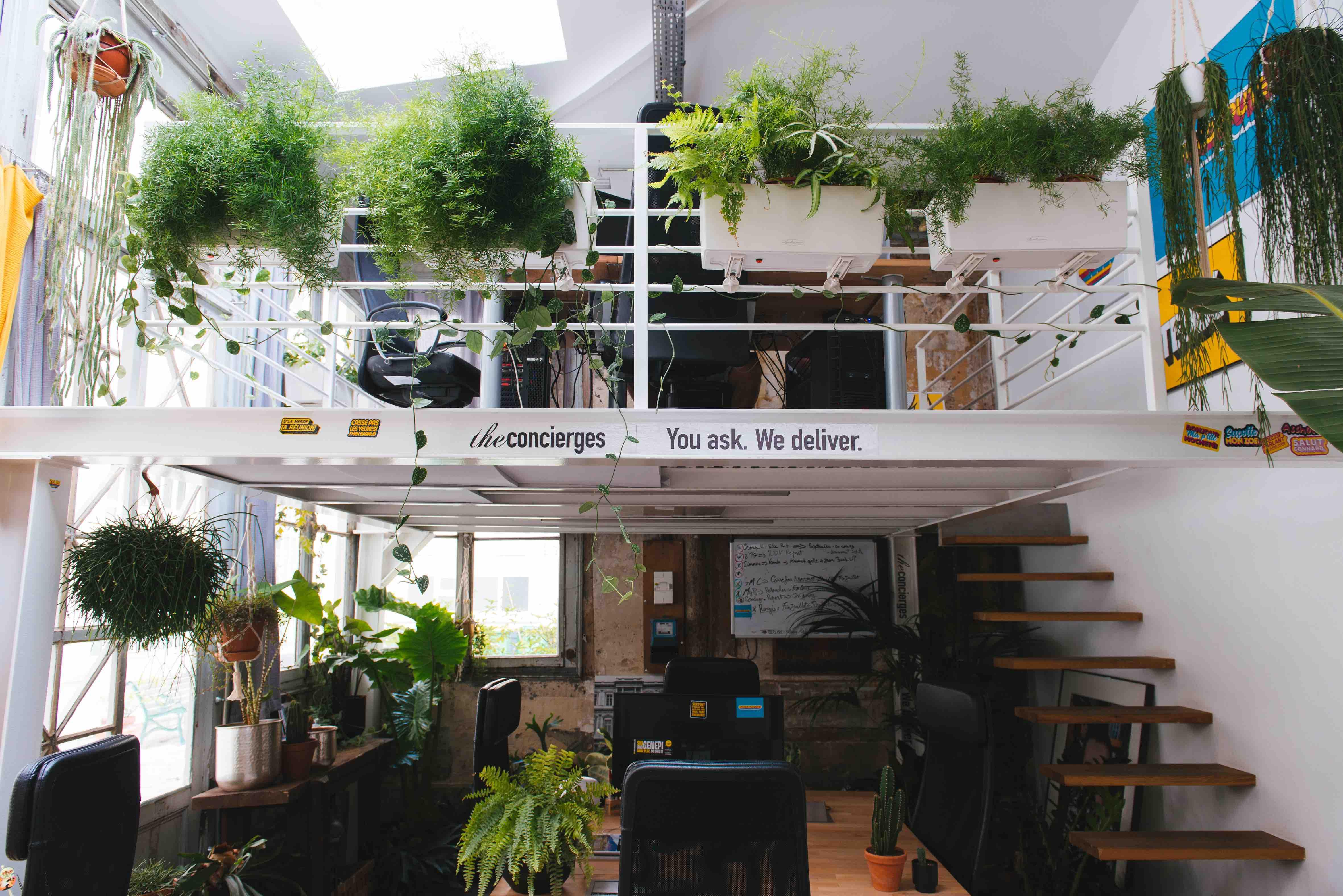 végétalisation bureaux paris jungle urbaine