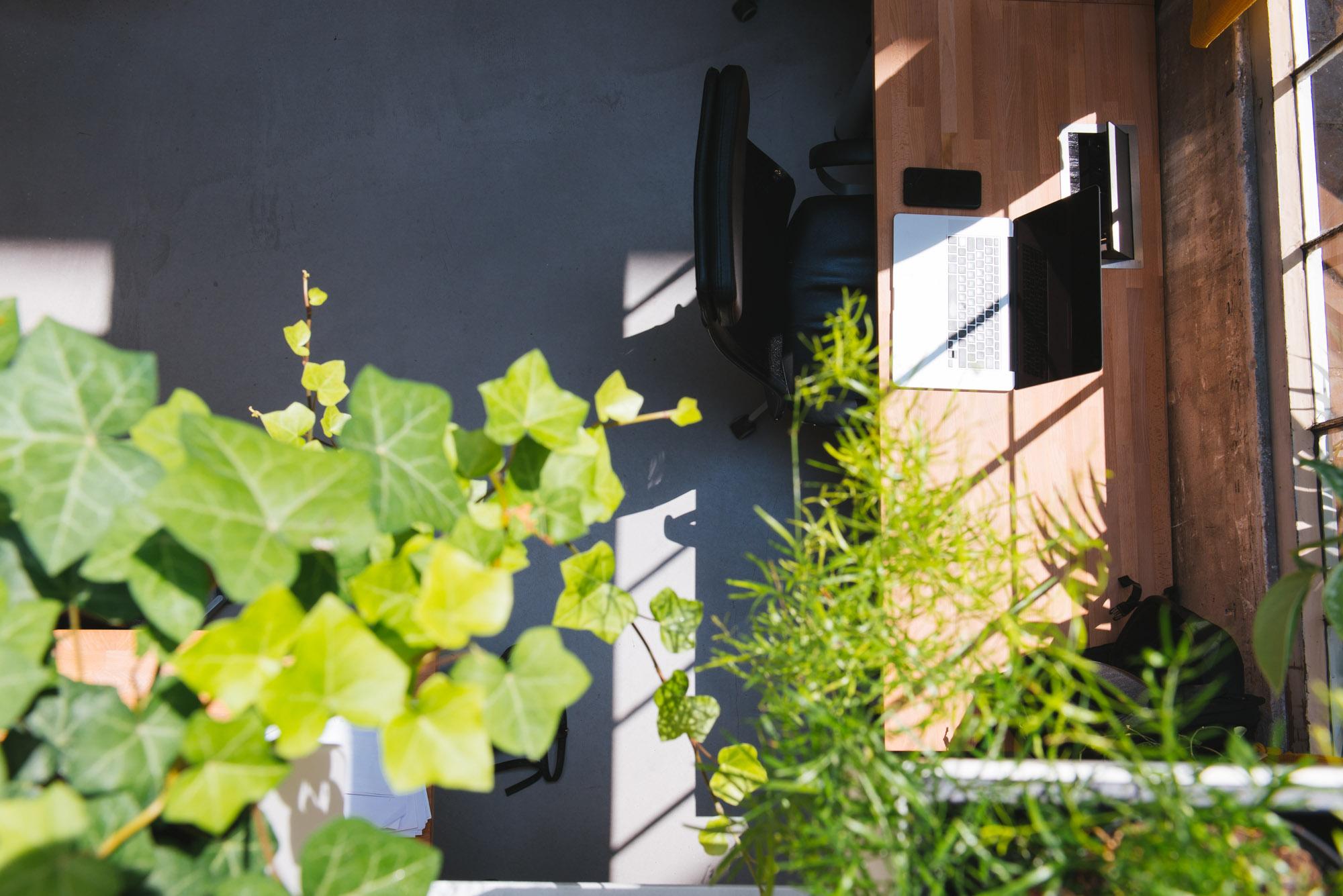 poste de travail décoration végétale végétalisation vert
