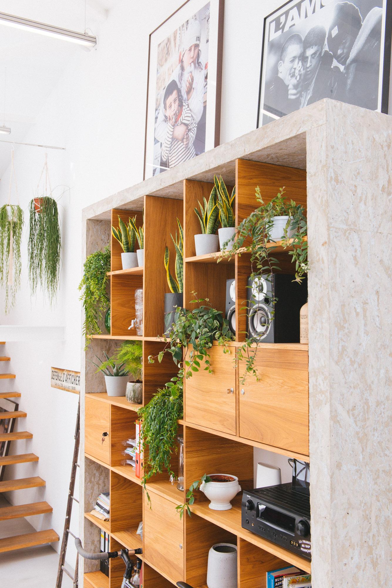 urban jungle bureau végétalisation bureaux décoration végétale d'intérieur