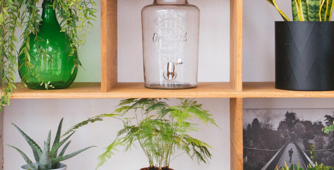 étagère végétale végétalisation bureaux