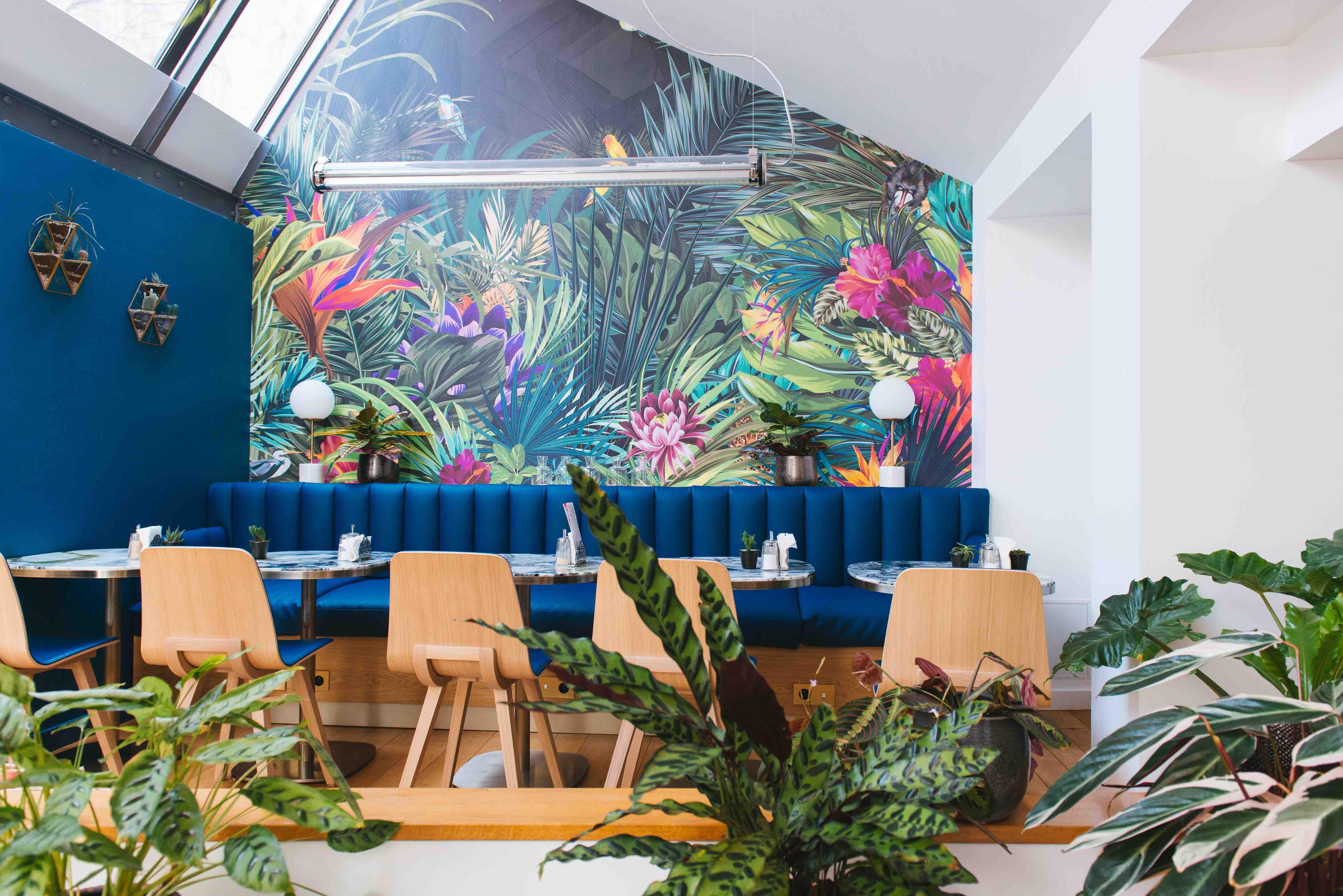 végétalisation bureaux sweet jungle paris